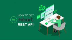 如何获得3dCart REST API, How to get 3dCart REST API